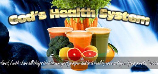 gods-health-system-1-768x310