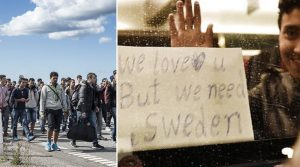 Tens of thousands of migrants have passed through Denmark to enter Sweden during 2015 and 2016, attracted by Sweden's generous welfare payments and free housing