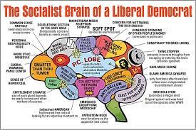socialst-brain
