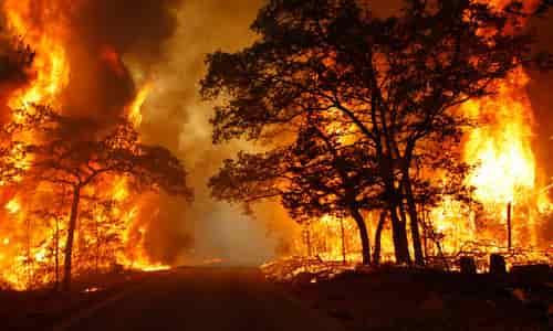 wildfirejune16